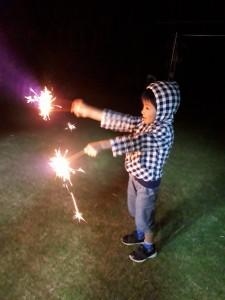 今年初の花火